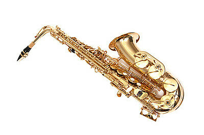 NEW  SD  jean paul alto saxophone with case. Free shipping!!!!! FAST!