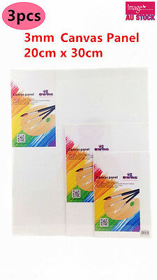 3x Blank Canvas Panel Bulk Lots Wholesale 20x30cm 3mm Thick Art Painting YW