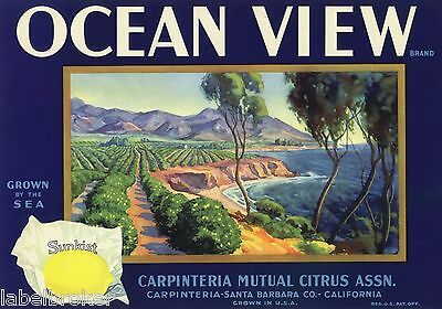 Ocean View Lemon Crate Label Santa Barbara Carpinteria Vintage Advertising Sea