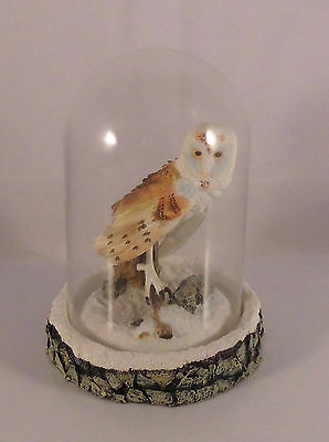Franklin Mint The Magnificent Barn Owl Eule Figur mit Glashaube Limited Edition