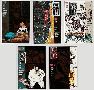 Daredevil: The Man Without Fear Nr.1-5 (Serie komplett)