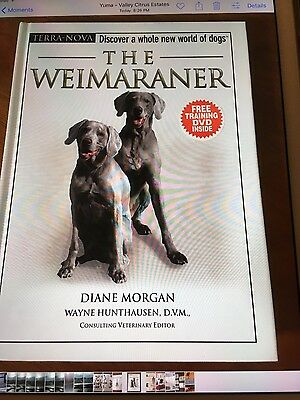 The Weimaraner Dog Book