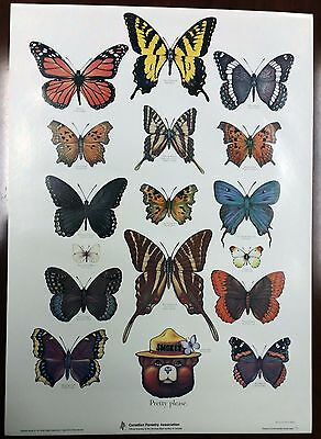"""Vintage Canadian Forestry Association Smokey The Bear """"Butterfly""""  US Forest"""