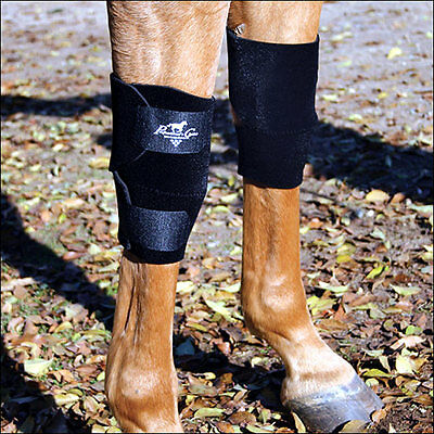 Professional Choice Horse Equine Protective Knee Boots Leg Pair Black