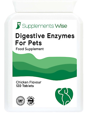 Digestive Enzymes For Pets 120 Tablets For Cats Or Dogs Healthy Digestion