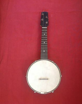 Vintage Banjolele (ukulele banjo) Beautiful Decorative Backplate & Original Case