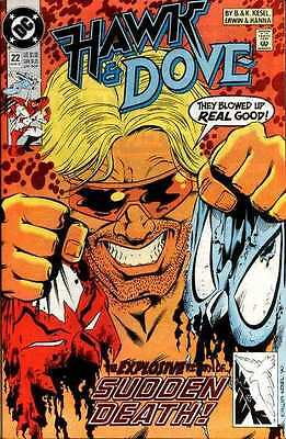 Hawk and Dove (1989 series) #22 in Near Mint condition. FREE bag/board