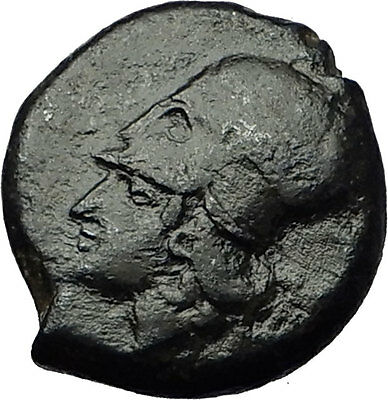 ADRANON in SICILY Rare R1 344BC Athena Octopus Genuine Ancient Greek Coin i59226