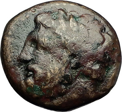 GYRTON in THESSALY 400BC Zeus Horse Original Authentic Ancient Greek Coin i59260