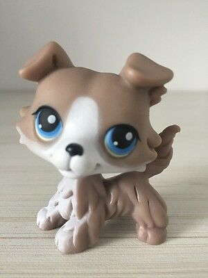 Littlest Pet shop Dog Collie Colley #67 Grey Gray White ��Rare��