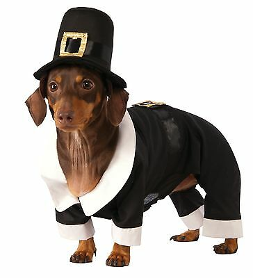 Rubies Costume Co Pilgrim Boy Dog Costume Large