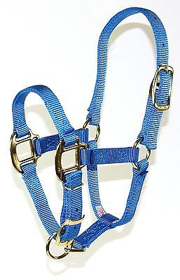 Hamilton 3QA FLBY 3/4 Adjustable Quality Horse Halter 100 to 200-Pound Foal B...