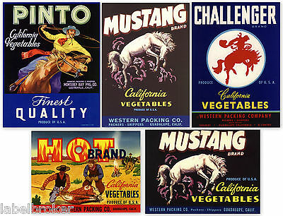 5 Fruit Box Crate Labels Vintage Lot Original Cowboys Western Horses 1940S 50S