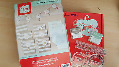 June 2016 Paper Pumpkin FULL KIT Banner Surprise Stampin Up with Ink & Stamps
