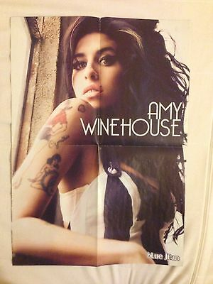 Amy Winehouse Large Poster 21.5x15.5