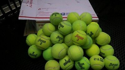 40 Used Tennis Balls, $SALE$  Free shipping,Dog toys,practice.etc..