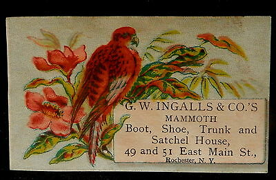 Tradecard G W INGALLS & Co's Rochester NY MAMMOTH BOOT, SHOE, TRUNK & SATCHEL