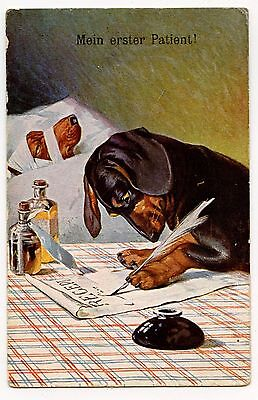 Magnifique Teckel Docteur.doctor. Dackel.dachsund.plume. Encrier.pluck .Inkwell.