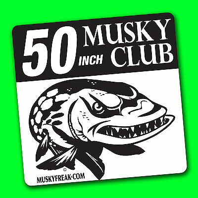 50 inch + Musky Club Decal - Muskie fishing Musky sticker for boat tacklebox