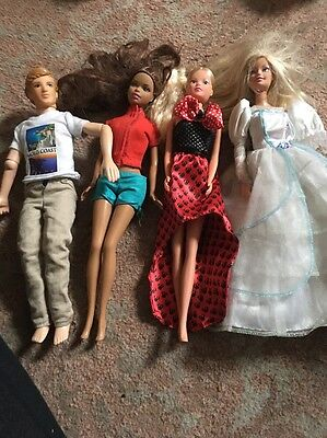 Barbie Dolls And Male Doll