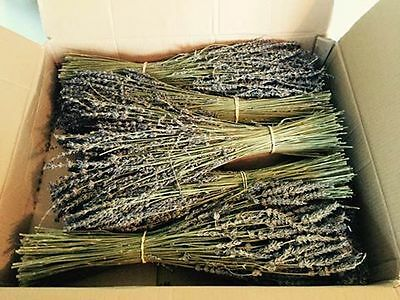 Box of Dried Lavender Flowers - 5 large bunches