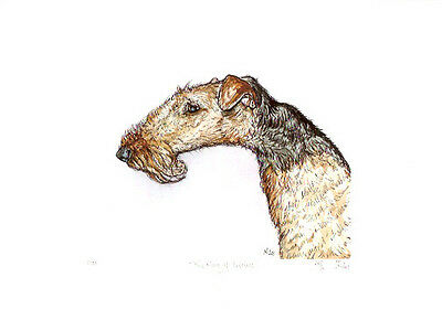 Airedale Terrier Limited Edition Print UKArtist ElleWilson The king of Terrier