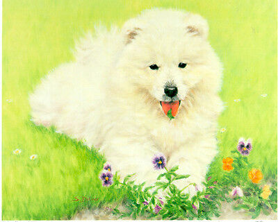 Samoyed Limited Edition Puppy Print by UK Artist Sue Driver
