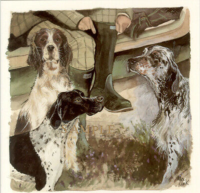English Setter Pointer Springer Spaniel Note Cards by Alex Clark Pack of 3