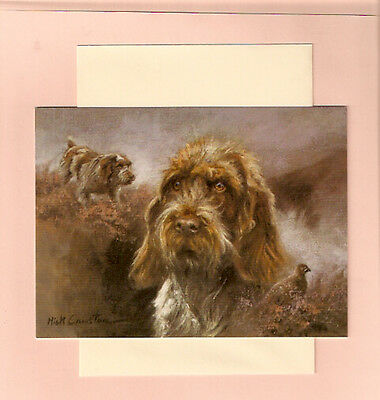 Wire Haired German Pointer Notecards Note Cards by Mick Cawston Pack of 5