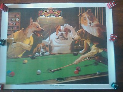 POOL DOG POSTERS BY SARNOFF- SCRATCHING- HUSTLER- RIPPER- 1 LEG-SCRATCH 51x39
