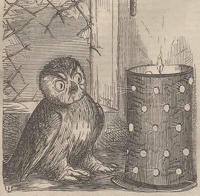 Genuine 1855 Print Victorian Owl Candle Light Shade Night Farming Halloween