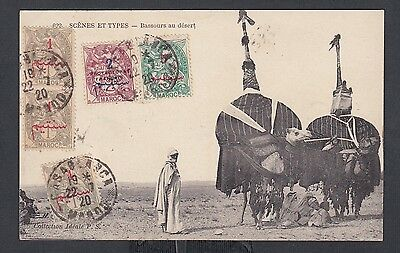 French Morocco 1920 Camels In The Desert Postcard Casablanca To Asti Italy