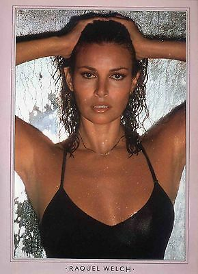 Raquel Welch Poster . Film Movie Actress. One Million Years Bc .not Dvd