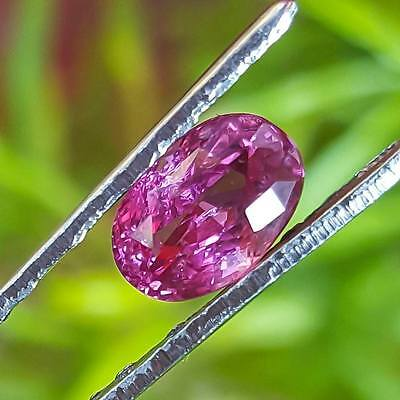 CERTIFIED 1.03 Cts Natural Unheated CEYLON PINK SAPPHIRE Loose Gemstone PS006