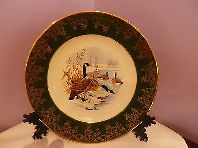 SUPERB CANADA GEESE DESIGN PORCELAIN PLATE 20 CMS DIA BY ROYAL FALCON in V.G.U.C