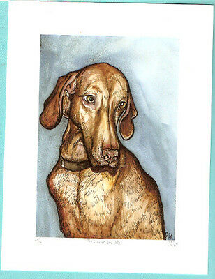 Vizsla Limited Edition Art Print from UK Artist Elle Wilson It's never too late
