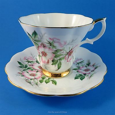 "Royal Albert Friendship Series "" Wild Rose ""  Tea Cup and Saucer Set"