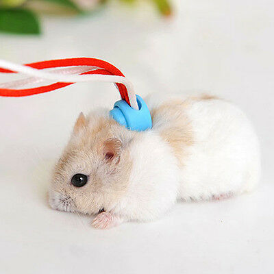 Adjustable Ferret Harness/Baby Rabbit/Hamster Rat Mouse Leash Easy to Use