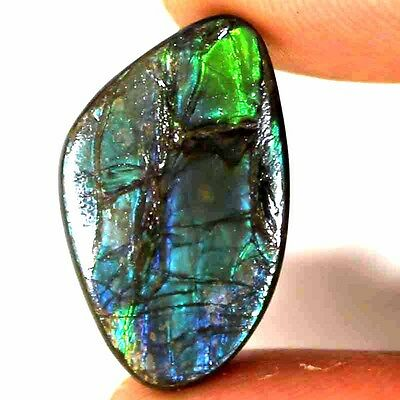 20.50 CTs 100% NATURAL MULTI FLASHING AMMOLITE FANCY CABOCHON SUPER GEMSTONE