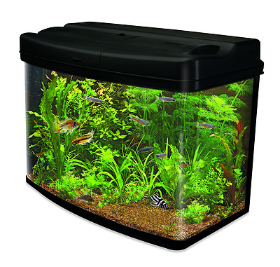 Interpet AMA0380 Fish Pod Glass Aquarium Fish Tank - 64 L