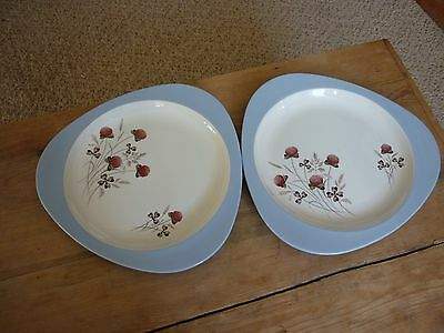 Spode 'Summer Days' 2 X Dinner Plates