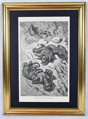 1 Ernest Griset Engraving, Aesop's Fables 1868, The Lion the Tiger and the Fox