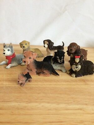 7 Large Dogs . In my Pocket. Ex cond .bundle,joblot.