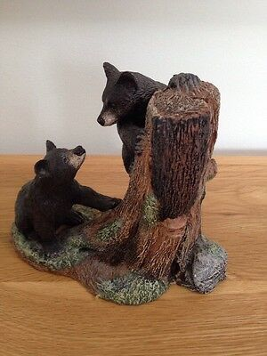 Black Bear Cubs Climbing The Peak Time Collection