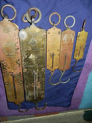Lot 5 Antique Meat Poutry Hanging Spring Balance ScaleTurnbull's Jacob Chatillon