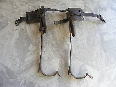 Vintage Pole Climbing Spikes Gaffs w Leather Straps - BELL SYSTEM - Buckingham