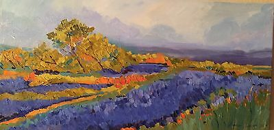 HILL COUNTRY OF TEXAS Original Oil Painting  on canvas-Framed B.Garstecki