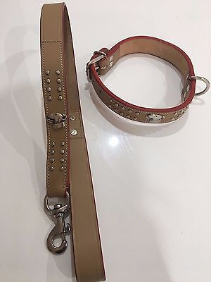 Tan Leather English Bull Terrier Dog Collar and Lead Set