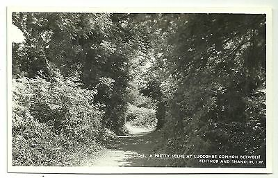 Isle of Wight postcard Luccombe Common between Ventnor & shanklin
