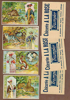 TYPE CARDS: Collection of RARE Victorian TRAMPLER COFFEE Cards (1900)Y